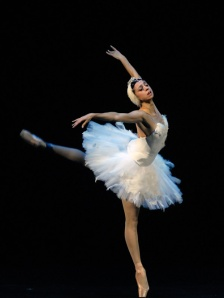 "Nina Ananiashvili's ""Dying Swan."" Picture taken from her website."